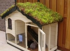 trapje konijnenhok kopen